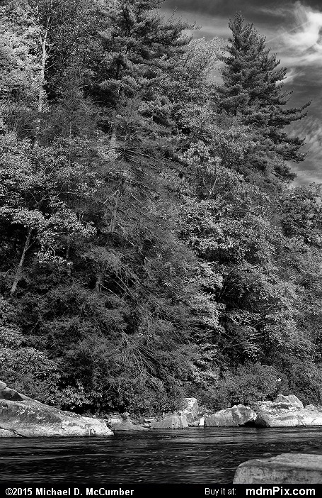 Ferncliff Peninsula (Ferncliff Peninsula Black and White Picture 050 - October 22, 2015 from Ohiopyle State Park, Pennsylvania)