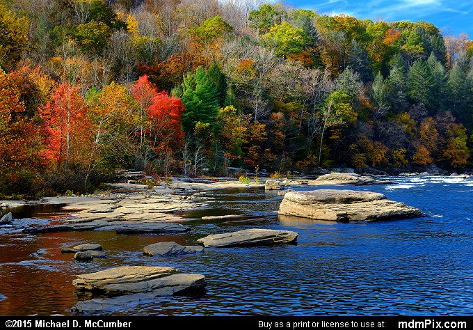 Youghiogheny River (Youghiogheny River Picture 055 - October 22, 2015 from Ohiopyle State Park, Pennsylvania)