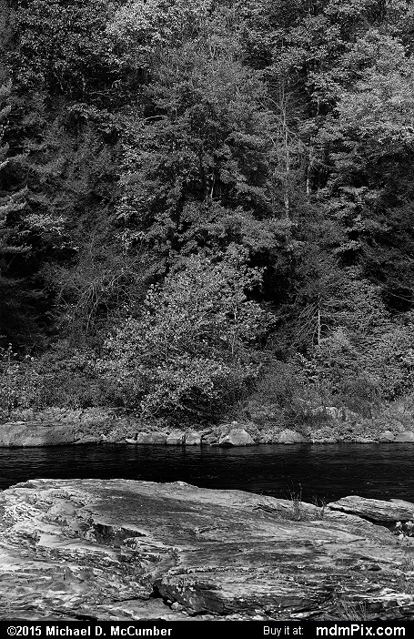 Sandstone (Sandstone Black and White Picture 060 - October 22, 2015 from Ohiopyle State Park, Pennsylvania)