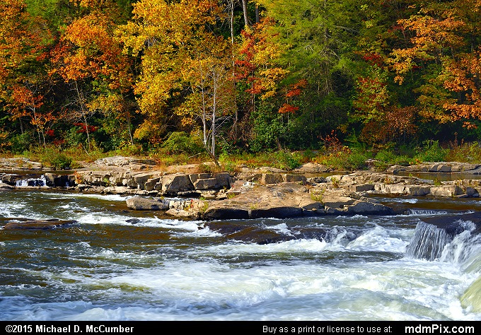 Youghiogheny River (Youghiogheny River Picture 067 - October 22, 2015 from Ohiopyle State Park, Pennsylvania)