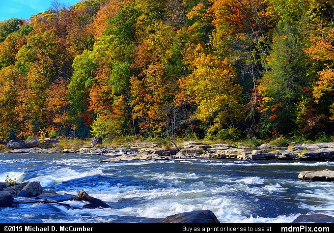 Youghiogheny River (Youghiogheny River Picture 068 - October 22, 2015 from Ohiopyle State Park, Pennsylvania)