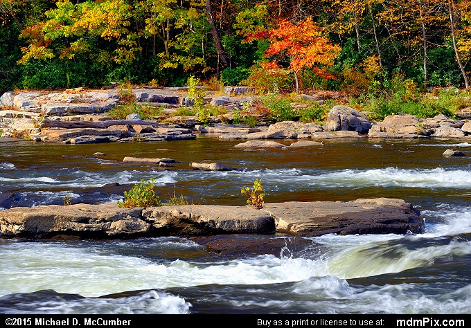 Youghiogheny River (Youghiogheny River Picture 069 - October 22, 2015 from Ohiopyle State Park, Pennsylvania)