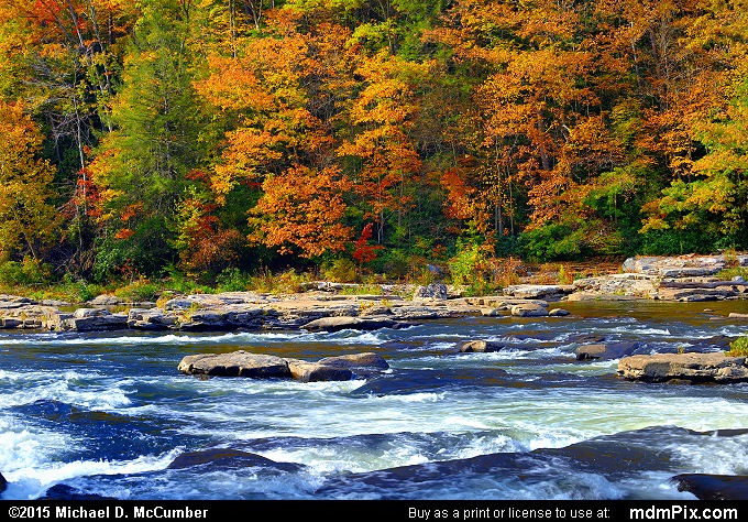 Youghiogheny River (Youghiogheny River Picture 070 - October 22, 2015 from Ohiopyle State Park, Pennsylvania)
