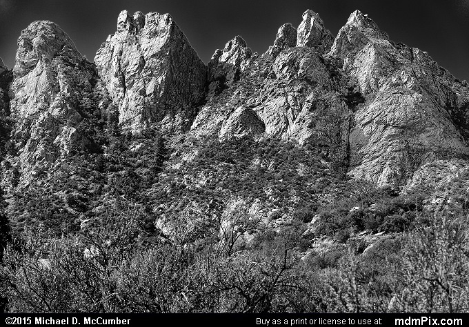 Low Horns (Low Horns Black and White Picture 044 - October 26, 2015 from Organ Mountains-Desert Peaks National Monument, New Mexico)