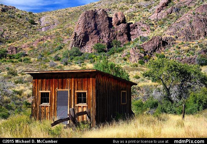 Cox Ranch Shack in a Pinyon-Juniper Grassland