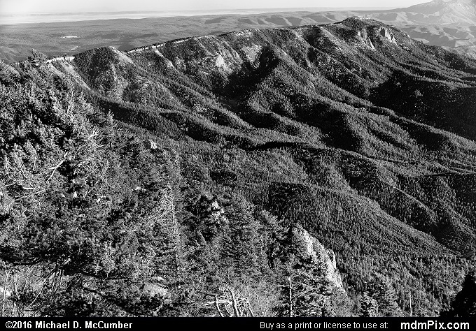 Sandia Crest (Sandia Crest Black and White Picture 013 - March 16, 2016 from Cedar Crest, New Mexico)
