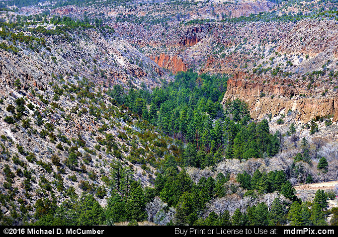 Frijoles Canyon (Frijoles Canyon Picture 031 - March 21, 2016 from Bandelier National Monument, New Mexico)