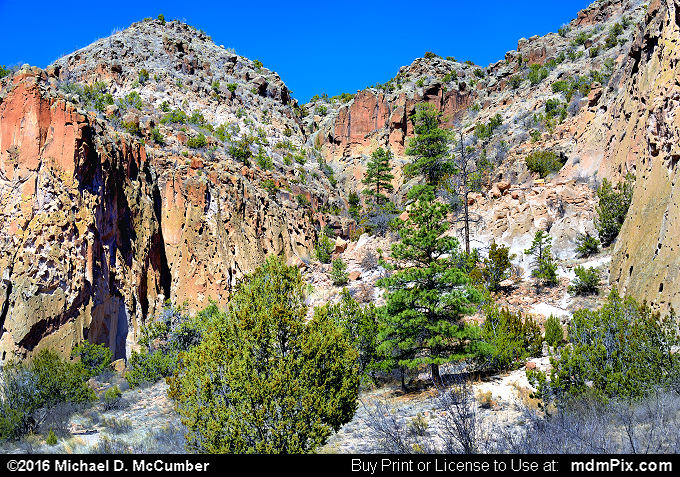 Frijoles Canyon (Frijoles Canyon Picture 041 - March 21, 2016 from Bandelier National Monument, New Mexico)