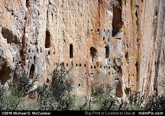 Frijoles Canyon (Frijoles Canyon Picture 048 - March 21, 2016 from Bandelier National Monument, New Mexico)