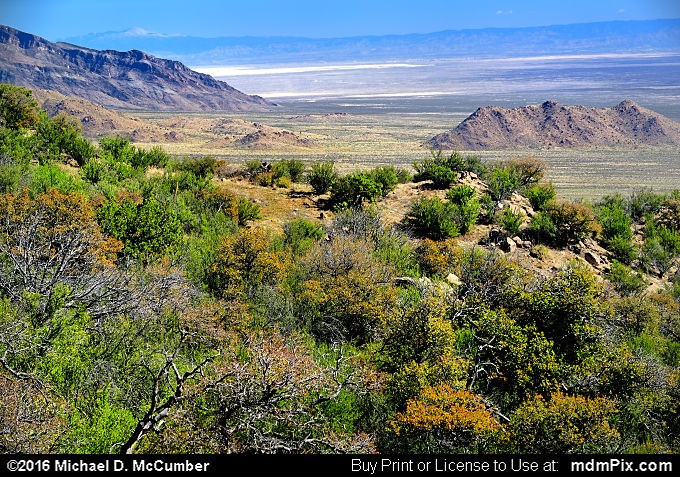 Tularosa Basin (Tularosa Basin Picture 009 - March 25, 2016 from Organ Mountains-Desert Peaks National Monument, New Mexico)