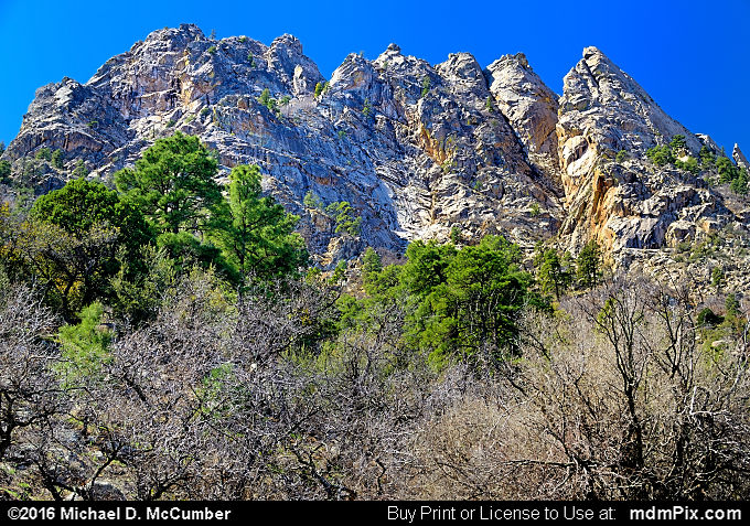 Low Horns (Low Horns Picture 018 - March 25, 2016 from Organ Mountains-Desert Peaks National Monument, New Mexico)