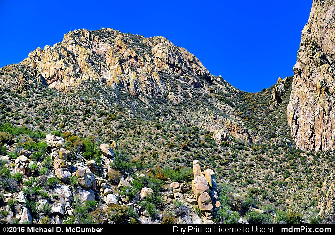 Organ Mountains (Organ Mountains Picture 046 - March 25, 2016 from Organ Mountains-Desert Peaks National Monument, New Mexico)