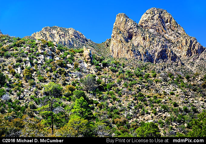 Organ Mountains (Organ Mountains Picture 061 - March 25, 2016 from Organ Mountains-Desert Peaks National Monument, New Mexico)