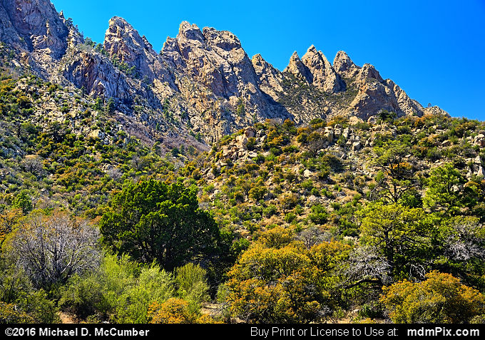 Low Horns (Low Horns Picture 062 - March 25, 2016 from Organ Mountains-Desert Peaks National Monument, New Mexico)