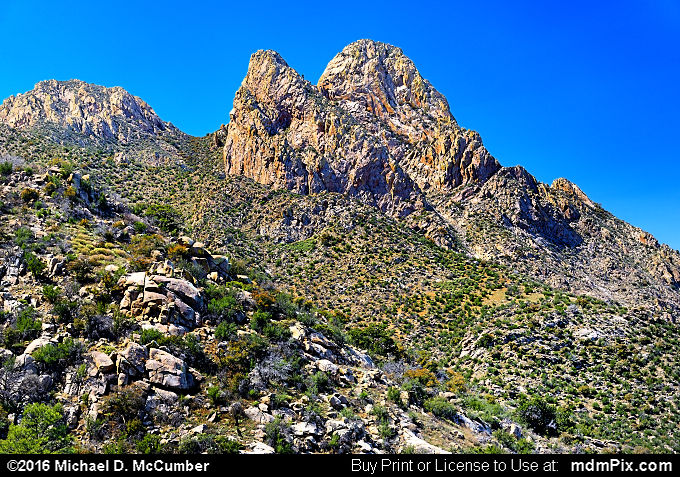 Rabbit Ears (Rabbit Ears Picture 063 - March 25, 2016 from Organ Mountains-Desert Peaks National Monument, New Mexico)
