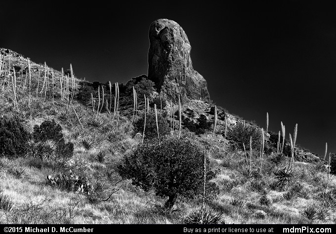 Chimney Rock (Chimney Rock Black and White Picture 012 - March 26, 2016 from Organ Mountains-Desert Peaks National Monument, New Mexico)