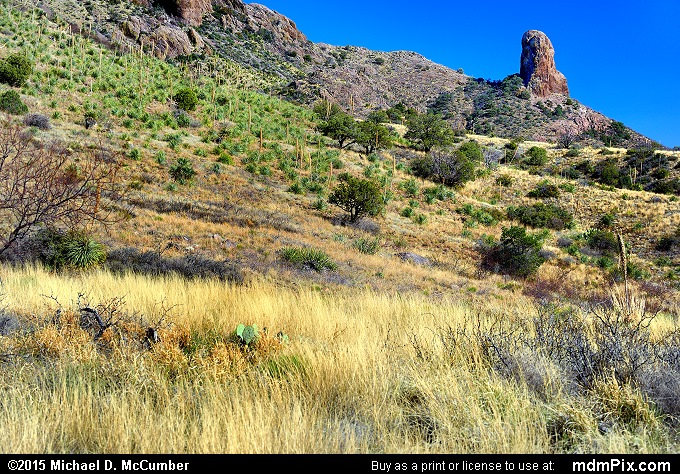 Pinyon-Juniper Grassland with Chimney Rock