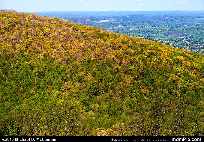 Pine Knob (Pine Knob Picture 003 - May 8, 2016 from Hopwood, Pennsylvania)