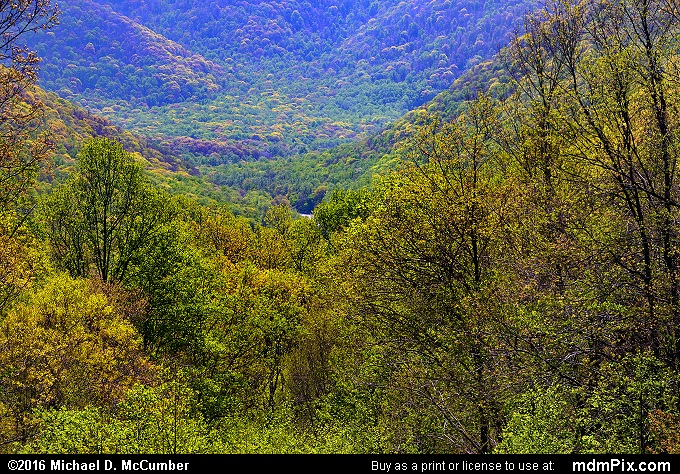 Kentuck Overlook (Kentuck Overlook Picture 013 - May 8, 2016 from Ohiopyle State Park, Pennsylvania)