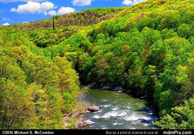 Youghiogheny River (Youghiogheny River Picture 032 - May 8, 2016 from Ohiopyle State Park, Pennsylvania)