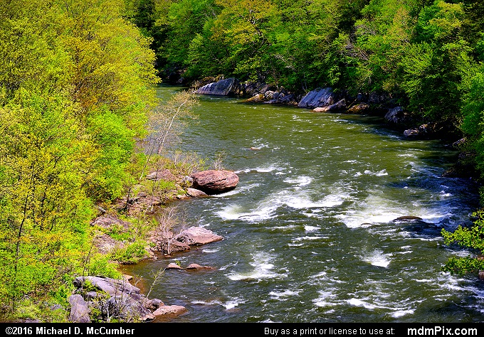 Youghiogheny River (Youghiogheny River Picture 033 - May 8, 2016 from Ohiopyle State Park, Pennsylvania)