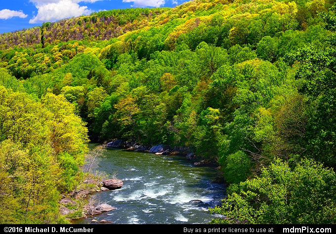 Youghiogheny River Trail (Youghiogheny River Trail Picture 034 - May 8, 2016 from Ohiopyle State Park, Pennsylvania)