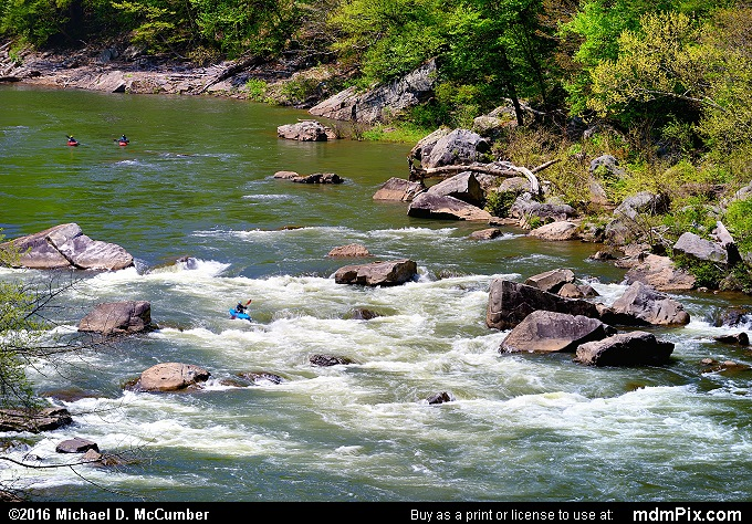 Youghiogheny River (Youghiogheny River Picture 035 - May 8, 2016 from Ohiopyle State Park, Pennsylvania)