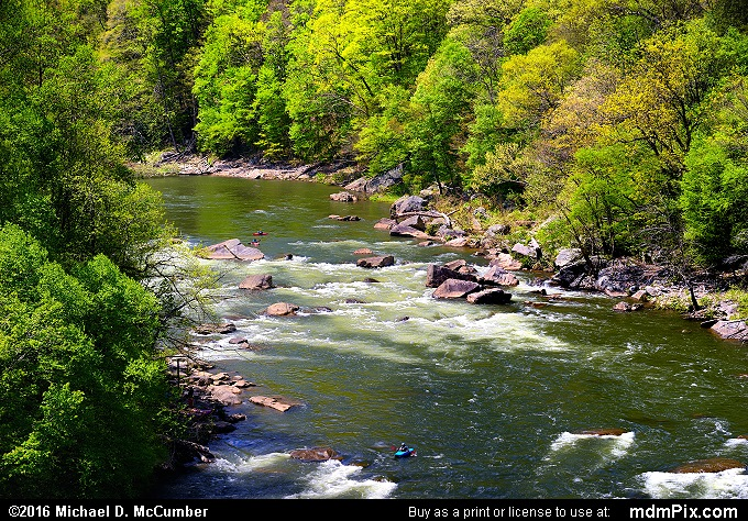 Youghiogheny River (Youghiogheny River Picture 036 - May 8, 2016 from Ohiopyle State Park, Pennsylvania)