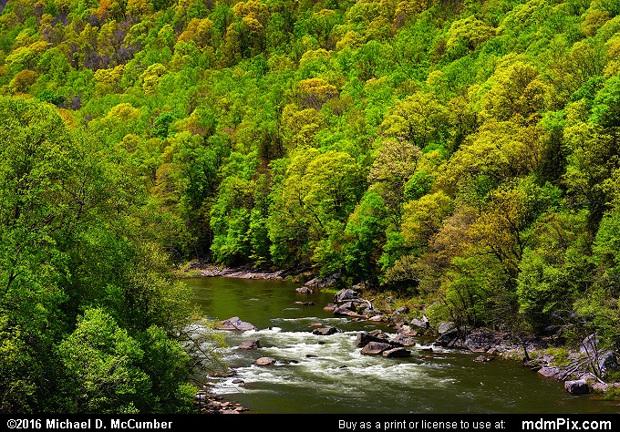 Youghiogheny River (Youghiogheny River Picture 038 - May 8, 2016 from Ohiopyle State Park, Pennsylvania)