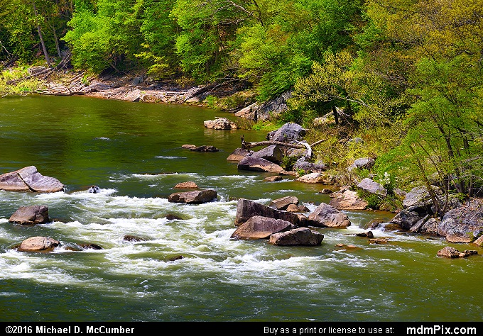 Youghiogheny River (Youghiogheny River Picture 041 - May 8, 2016 from Ohiopyle State Park, Pennsylvania)