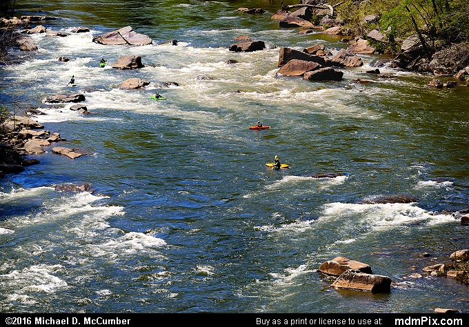 Youghiogheny River (Youghiogheny River Picture 044 - May 8, 2016 from Ohiopyle State Park, Pennsylvania)