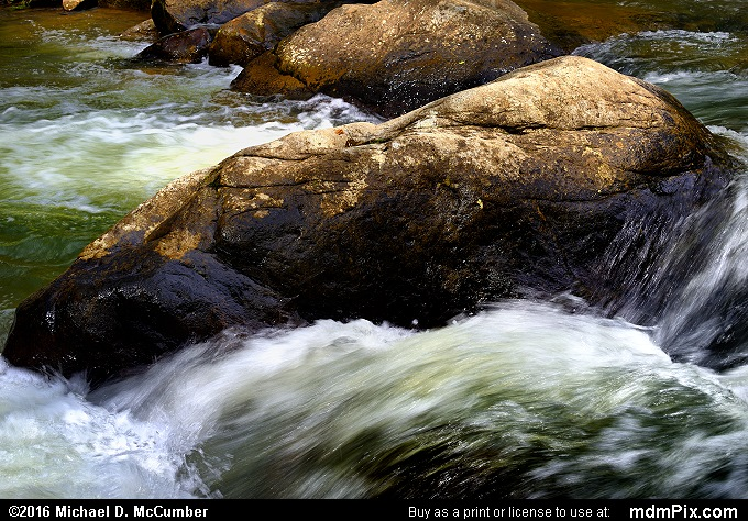 Meadow Run (Meadow Run Picture 059 - May 8, 2016 from Ohiopyle State Park, Pennsylvania)