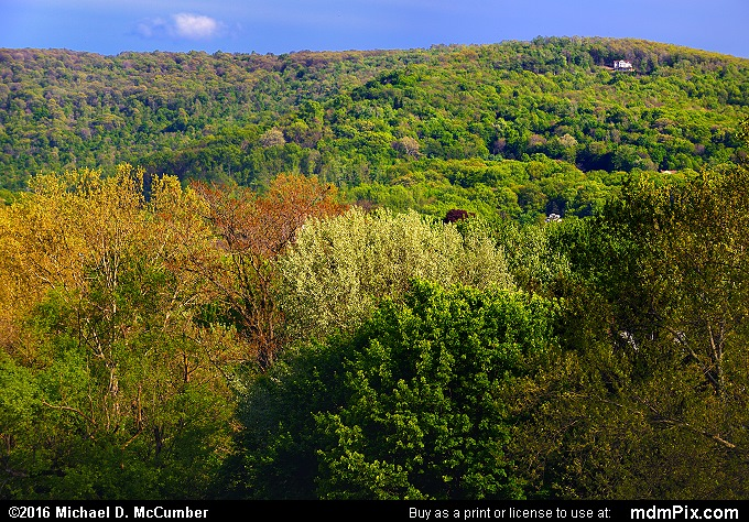 Chestnut Ridge (Chestnut Ridge Picture 075 - May 8, 2016 from Connellsville, Pennsylvania)