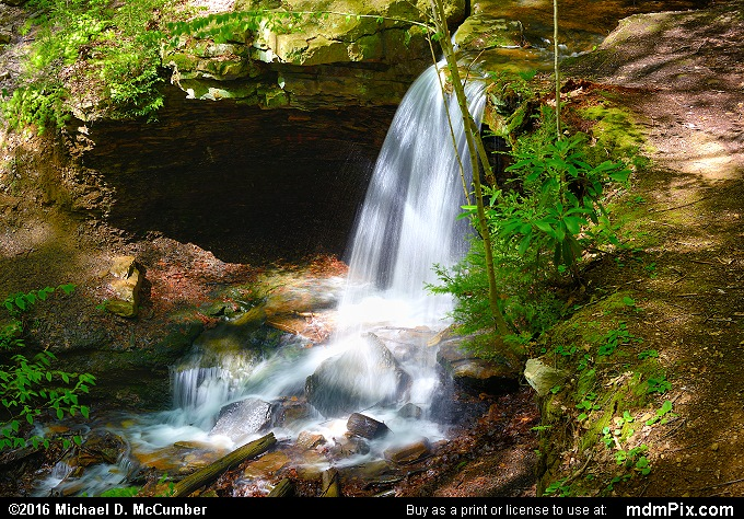 Adams Falls (Adams Falls Picture 001 - May 16, 2016 from Linn Run State Park, Pennsylvania)