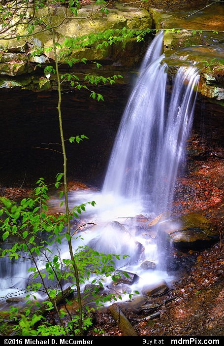 Adams Falls (Adams Falls Picture 003 - May 16, 2016 from Linn Run State Park, Pennsylvania)