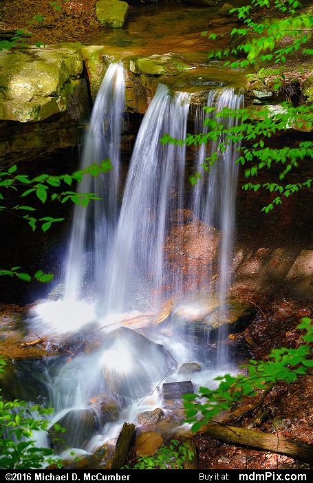 Adams Falls (Adams Falls Picture 005 - May 16, 2016 from Linn Run State Park, Pennsylvania)