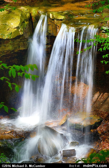 Adams Falls (Adams Falls Picture 006 - May 16, 2016 from Linn Run State Park, Pennsylvania)