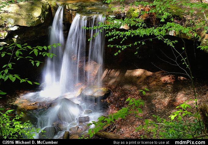 Adams Falls (Adams Falls Picture 007 - May 16, 2016 from Linn Run State Park, Pennsylvania)