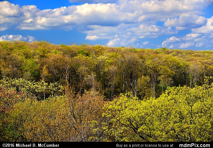 Beam Rocks Overlook (Beam Rocks Overlook Picture 008 - May 16, 2016 from Lincoln Township, Pennsylvania)