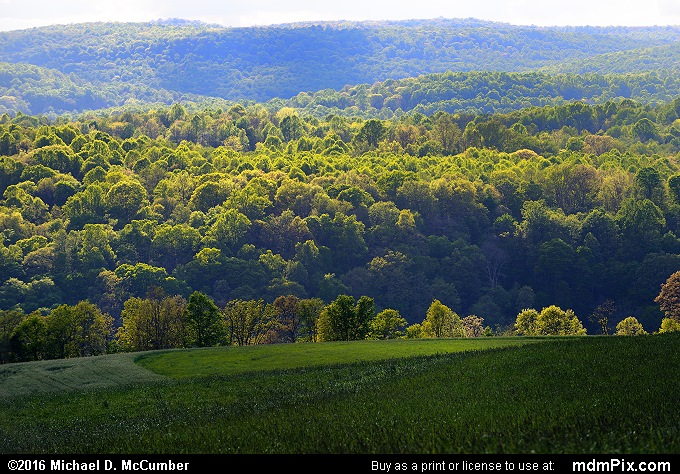 Allegheny Plateau (Allegheny Plateau Picture 013 - May 16, 2016 from Mill Run, Pennsylvania)