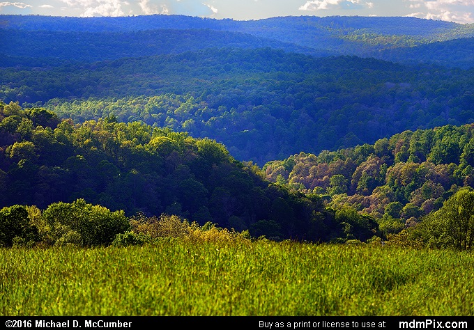 Youghiogheny Gorge (Youghiogheny Gorge Picture 015 - May 16, 2016 from Mill Run, Pennsylvania)