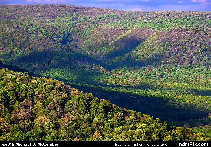 Slopes of Laurel Ridge in Spring from Ohiopyle's Baughman Rock