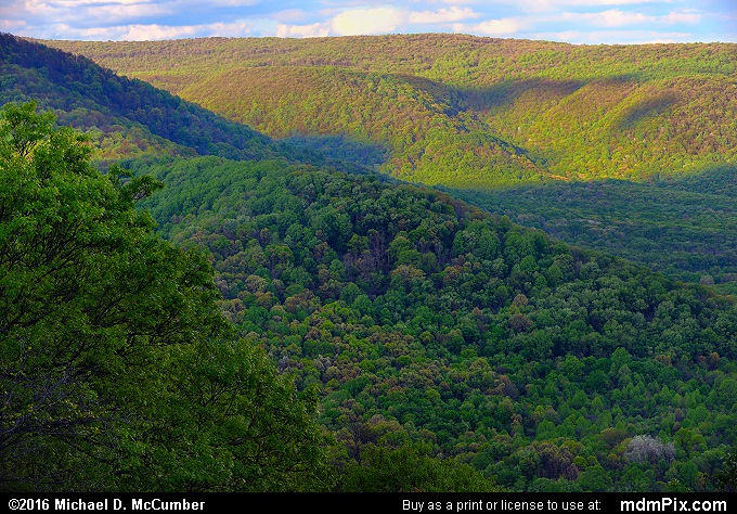 Laurel Ridge (Laurel Ridge Picture 025 - May 16, 2016 from Ohiopyle State Park, Pennsylvania)
