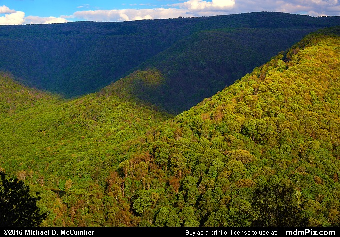 Laurel Ridge (Laurel Ridge Picture 028 - May 16, 2016 from Ohiopyle State Park, Pennsylvania)