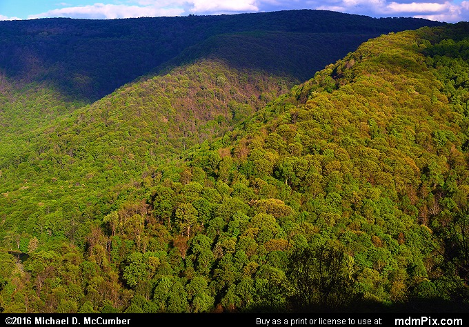 Youghiogheny Gorge (Youghiogheny Gorge Picture 033 - May 16, 2016 from Ohiopyle State Park, Pennsylvania)