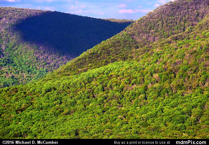 Laurel Ridge (Laurel Ridge Picture 038 - May 16, 2016 from Ohiopyle State Park, Pennsylvania)
