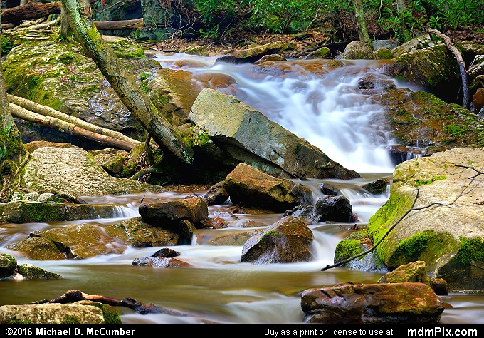 Cucumber Run (Cucumber Run Picture 050 - May 16, 2016 from Ohiopyle State Park, Pennsylvania)