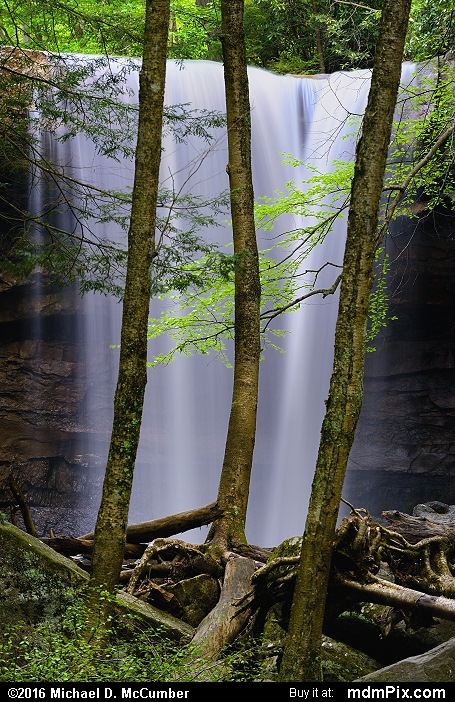 Cucumber Falls (Cucumber Falls Picture 051 - May 16, 2016 from Ohiopyle State Park, Pennsylvania)