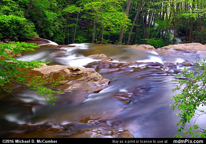 Cucumber Run (Cucumber Run Picture 056 - May 16, 2016 from Ohiopyle State Park, Pennsylvania)