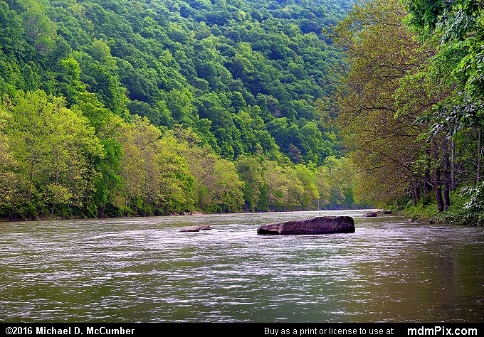 Youghiogheny Gorge (Youghiogheny Gorge Picture 004 - May 30, 2016 from Ohiopyle State Park, Pennsylvania)